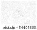 薔薇 54406863