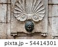 Lion-head Stone Fountain Closeup View 54414301