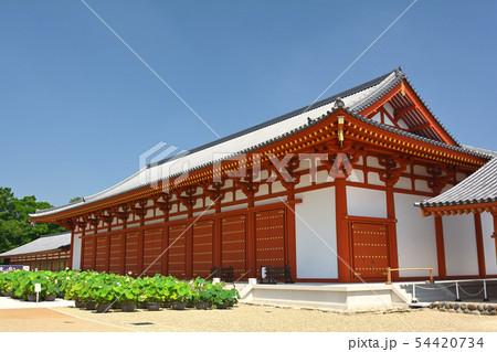 奈良・薬師寺 54420734