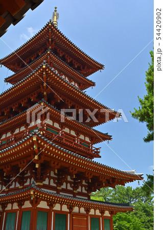 奈良・薬師寺 54420902