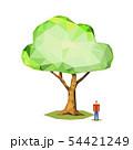 ポリゴン 54421249