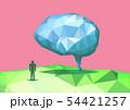 ポリゴン 54421257