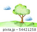 ポリゴン 54421258
