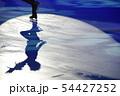 フィギュアスケート 54427252