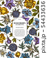 Card design with colored bellflower, edelweiss, globethistle, globeflower, meadow geranium, gentiana 54433636
