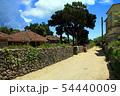 沖縄 赤瓦の琉球家屋が並ぶ竹富島の集落 54440009