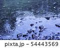 雨の水紋 水たまり 雨 雨天 雨滴 54443569