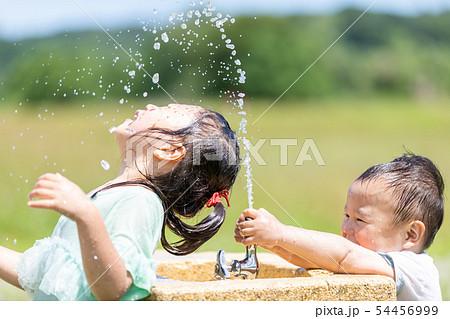 公園 子供 54456999