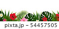 Tropical Flowers And Palm Leaf Isolated White 54457505