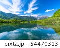 《長野県》初夏の上高地・新緑の大正池 54470313