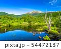 《長野県》新緑の乗鞍高原・オソメ池 54472137
