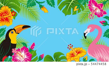 熱帯の鳥と植物のフレーム - コピースペースあり、青色背景 54474458