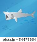 basking shark 54476964