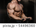 muscular bodybuilder fitness men doing arms 54496360