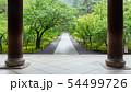 初夏の南禅寺 54499726