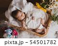 ニューボーン 赤ちゃん 54501782