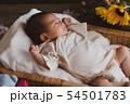 ニューボーン 赤ちゃん 54501783