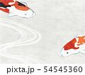 和紙風 錦鯉 テクスチャー 54545360