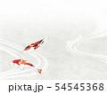 和紙風 錦鯉 テクスチャー 54545368