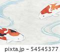 和紙風 錦鯉 テクスチャー 54545377