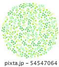 新緑の円 54547064