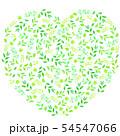 新緑のハート 54547066