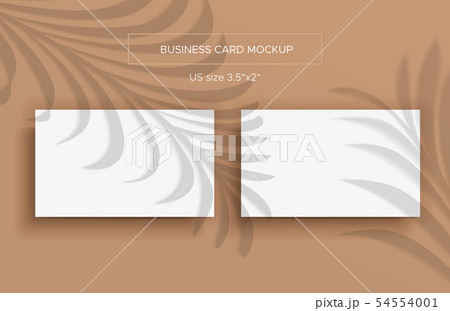 Two White Business cards Mockup and overlay shadow 54554001
