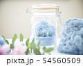 あじさい 紫陽花 ドライフラワー 54560509