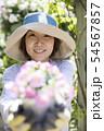 ガーデニングイメージ 花の苗を差し出す女性 54567857