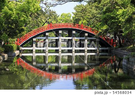 大阪・住吉大社・反橋(太鼓橋) 54568034