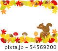 落ち葉14 リス 紅葉 秋 植物 動物 54569200