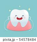 Brushing teeth flossing, Dental floss, 54578484