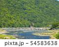 京都 嵐山 初夏 54583638