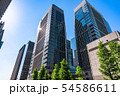 《東京都》初夏の大手町・ビジネス街 54586611