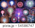 【秋田県】大曲の花火 全国花火競技大会 54586747