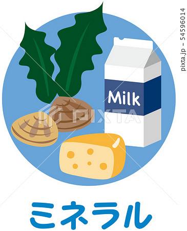 五大栄養素 ミネラル 54596014