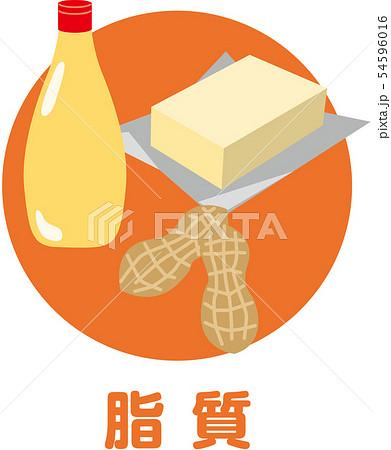 五大栄養素 脂質 54596016