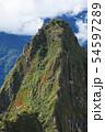 マチュピチュ遺跡 ワイナピチュ山(ペルー) 54597289