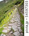 マチュピチュ遺跡 インティプンク(太陽の門)へ続くインカ道(ペルー) 54597303