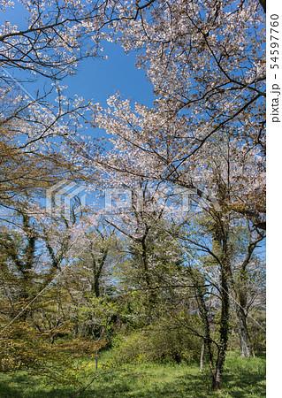 山城 月山富田城から見る風景 54597760