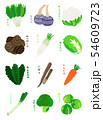 冬野菜 Winter vegetables 54609723