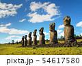 イースター島 アフ・アキビのモアイ(チリ) 54617580