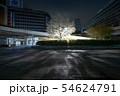 【西新宿・ロータリー】・さくら 54624791