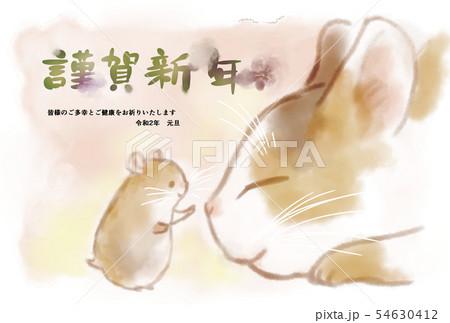 2020年賀状ハムスターと猫のイラスト素材 [54630412] , PIXTA