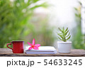 Red cup with flower and notebook at outdoor 54633245