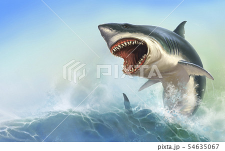 Great White Shark Body on beck realistic. 54635067