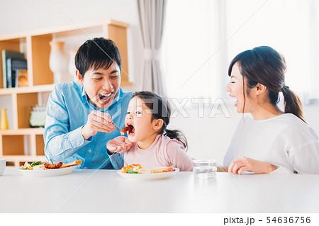 ファミリー 若い家族 54636756