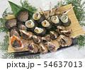 瀬戸内の貝類 54637013