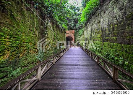 猿島 横須賀 無人島 要塞 54639606