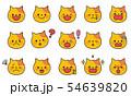 ネコの表情 54639820